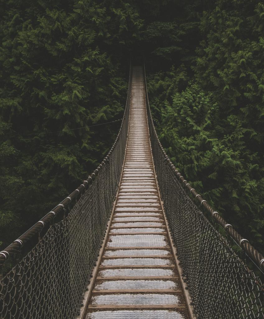bridge pathway